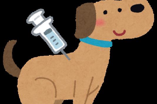 狂犬病集合注射中止のお知らせ