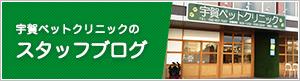 宇賀院長の院長ブログ