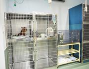 入院室サムネイル